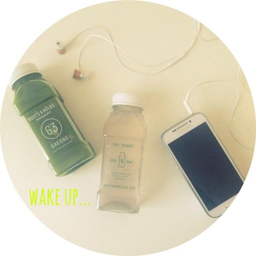 wake up... roots & bulbs