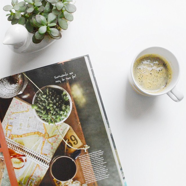 I'm reviewing @satie_san's new book, Decorating with Plants, over on the blog today (link in profile) #plants #decorating #urbanjunglebloggers