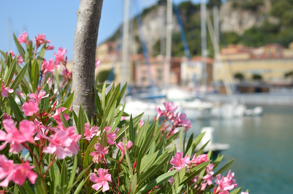 Nice Port 02