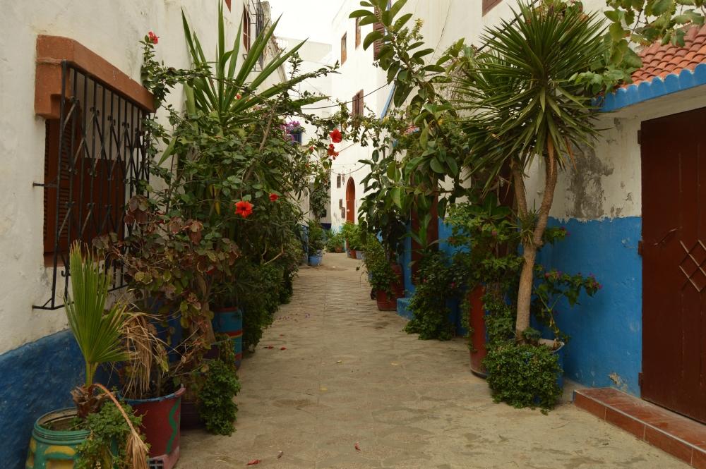 Assilah Morocco 14