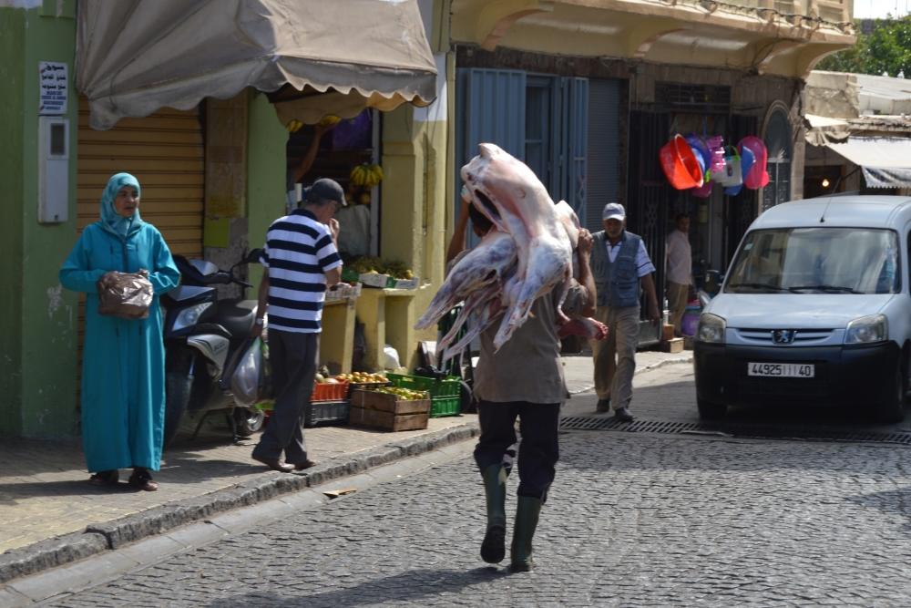 Tangier 02