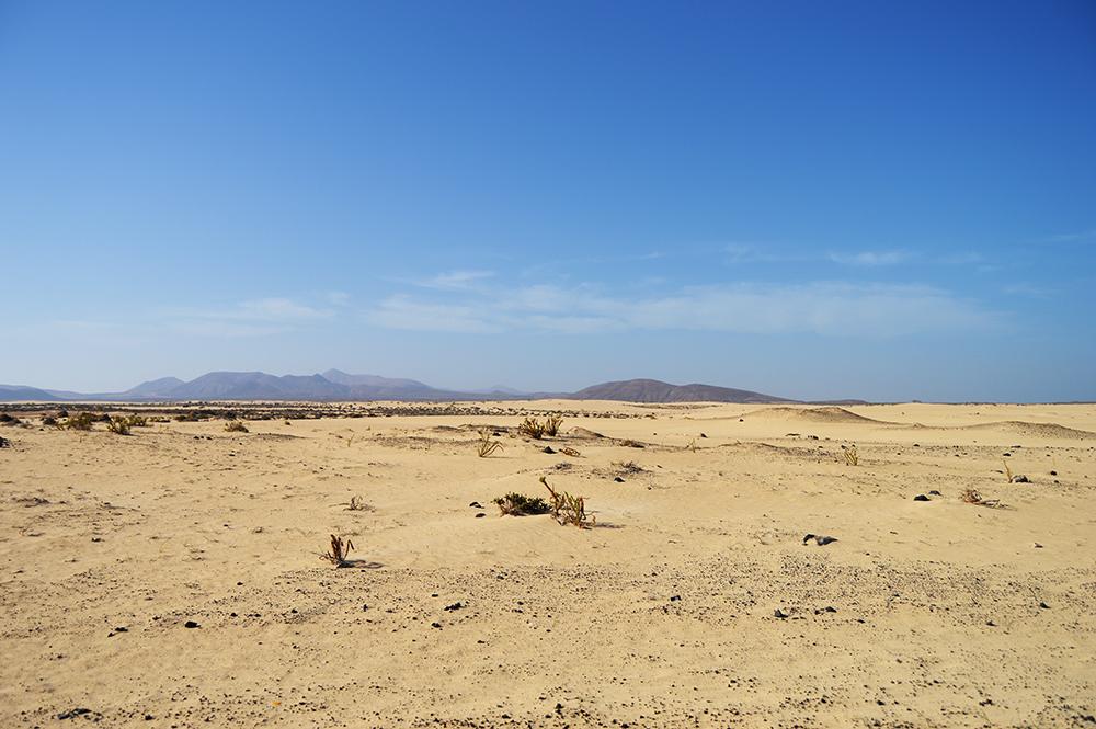 EXPLORE landscape Fuerteventura 01